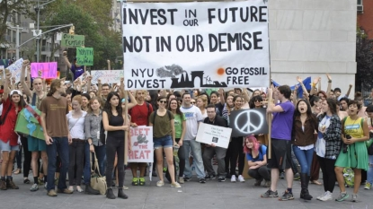 The Significant Insignificant: NYU's Divest