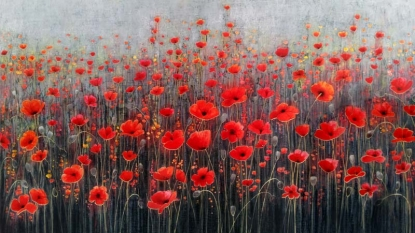 Painting the Poppies Red